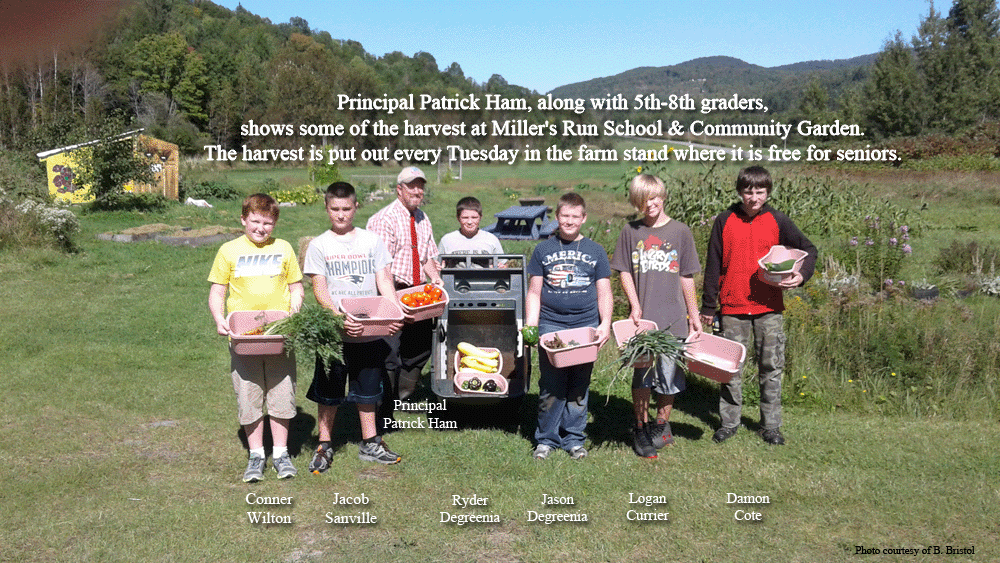 Principal Patrick Ham, along with 5th-8th graders, shows some of the harvest at Miller's Run School & Community Garden. The harvest is put out every Tuesday in the farm stand where it is free for seniors. Conner Wilton, Jacob Sanville, Principal Patrick Ham, Ryder Degreenia, Jason Degreenia, Logan Currier, Damon Cote